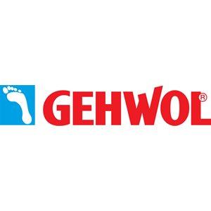 Formación Gelhwol 01- 3 horas